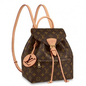 Louis Vuitton Montsouris PM Backpack Monogram M45501